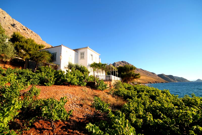 Amazing beach house in Vlichos, right next to the sea with grape vines.