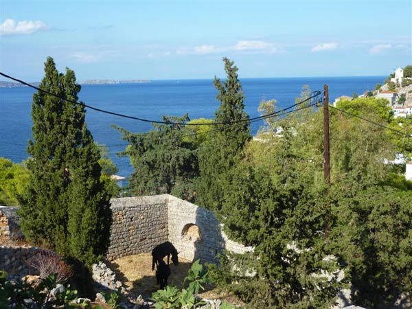 A lovely piece of land, walled on all sides, and with fantastic sea views.